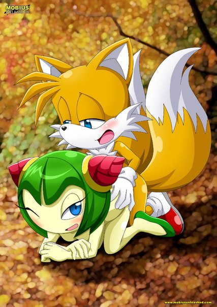 cosmo_the_seedrian mobius_unleashed palcomix sex sonic_(series) tails