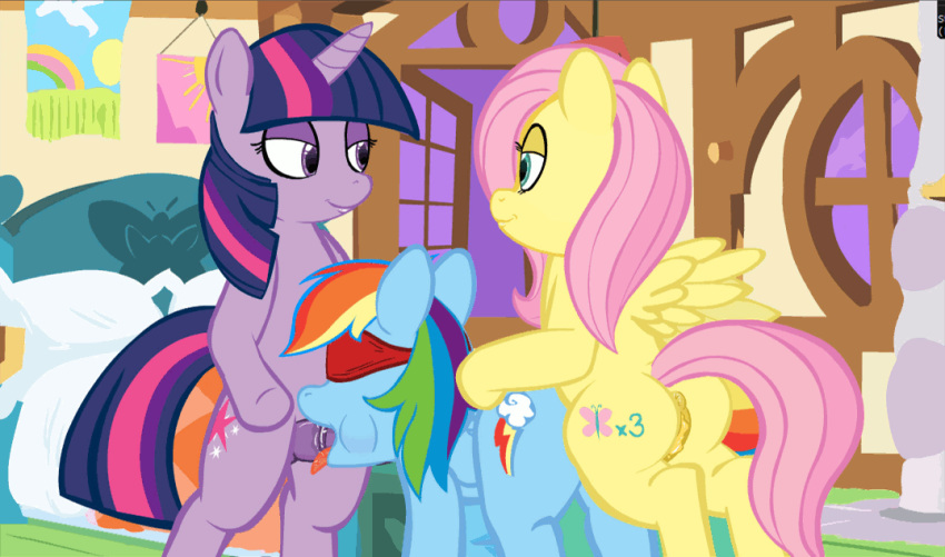animated fluttershy_(mlp) friendship_is_magic intersex mittsies my_little_pony r!p rainbow_dash_(mlp) twilight_sparkle_(mlp)