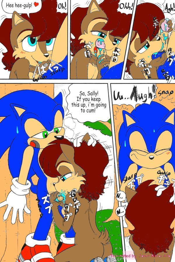 Sonic The Hedgehog And Sally Acorn Se