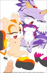 2girls blaze_the_cat breasts brown_eyes cream_the_rabbit cum cum_in_vagina feline female nude purple_hair pussy rabbit sonic tail vagina yellow_eyes