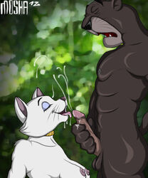 bagheera duchess jungle_book moshadahellhound the_aristocats