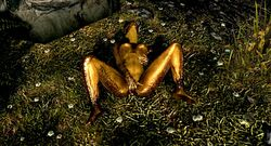 argonian ass breasts fingering lizard nude reptile scalie the_elder_scrolls the_elder_scrolls_v:_skyrim video_games