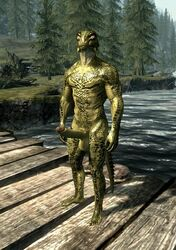 argonian bridge elder erection forest iv. male nude penis river scalie scrolls the_elder_scrolls the_elder_scrolls_v:_skyrim tree video_games wooden