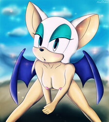 2014 anthro bat female howl_echoes mammal rouge_the_bat sega sonic_(series) wings