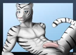 2013 abs anthro aolun aolun_(artist) balls feline fur furry looking_at_viewer male male_only mammal nude penis solo tiger white_tiger