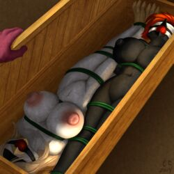 avian ball_gag beak big_breasts blanc blindfold bondage bound box breasts crate furry gag mosa noire pussy