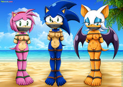2014 amy_rose bbmbbf beach black_nose blue_hair bondage bondage bound breasts cloud female gag green_eyes hair headband hedgehog hindpaw makeup mammal nipples outside paws pink_hair pink_skin pussy rope rouge_the_bat rule_63 sand sea seaside sega short_hair sky sonic_(series) sonic_the_hedgehog standing water white_hair wings