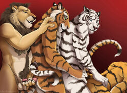 anthro blackteagan feline fur furry furry_only gay lion male mammal tiger white_tiger