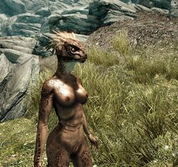 argonian breasts female nude pussy scalie the_elder_scrolls video_games