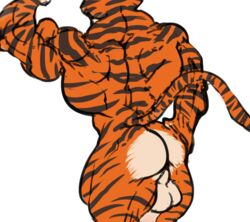 anthro ass back balls feline furry_(artist) madagascar male mammal muscles solo tiger vitaly_the_tiger