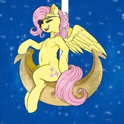 2014 animal_genitalia colored cutie_mark dickgirl equine eye_patch eyewear fluttershy_(mlp) friendship_is_magic fur hair half-closed_eyes horsecock intersex kevinsano mammal my_little_pony navel pegasus penis pink_hair sitting smile solo wings yellow_fur