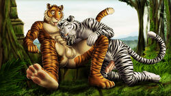 abs anthro biceps big_muscles dream_and_nightmare feline fur furry male mammal muscles pecs penis tiger