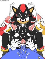 rule34rox rule_63 shadow_the_hedgehog sonic_(series) tagme