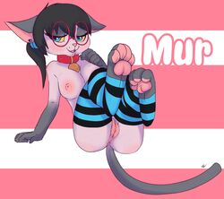 anus breasts eyewear feline female glasses hindpaw looking_at_viewer mammal murcat nude paws pinup pose pussy solo striped_socks