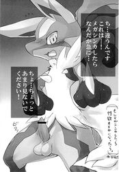 balls blush dialog lucario male mega_evolution mega_lucario nintendo penis pokemon solo text translation_request video_games