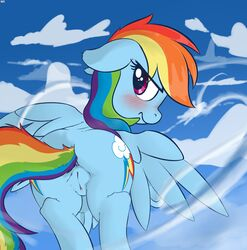 2014 anus ass blue_fur blush cloud cutie_mark equine eyelashes female feral flying friendship_is_magic fur hair mammal mostazathy multi-colored_hair my_little_pony outside pegasus purple_eyes pussy rainbow_dash_(mlp) rainbow_hair solo wings