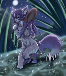 2014 anthro ayumi bath breasts canine closed_eyes female fox fur grass hair long_hair mammal moon multi-colored_hair night nipples nude purple_fur purple_hair smile sparkles water wet white_fur whitephox