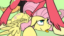 2014 anal animal_genitalia animated balls big_macintosh_(mlp) cutie_mark duo equine eyelashes female feral fetlocks fluttershy_(mlp) friendship_is_magic fucked_silly fur hair horse horsecock long_hair male mammal my_little_pony pegasus penetration penis pink_hair plain_background pony ralek red_fur sex straight tongue tongue_out wings yellow_fur
