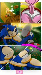 amy_rose comics green_eyes sega_series sonis_the_hedgehog tagme