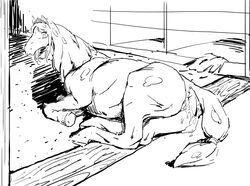 after_sex black_and_white blush cum embarrassed equine equine_pussy excessive_cum female horse laying_down looking_back monochrome overflow puffy_anus sketch