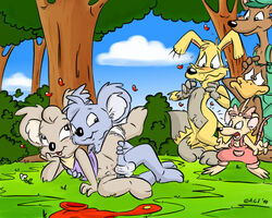 a.g.i. blinky_bill blinky_bill_(series) blush clothes coitus color cub dingo female flap fur furry interspecies kangaroo koala male marcia_mouse marsupial monotreme mouse multiple_females multiple_males nude nutsy penis platypus pussy rodent sex shifty_dingo splodge straight taz-mania vulva