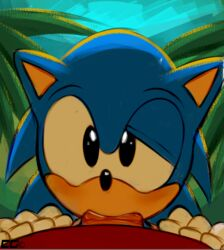 2boys anthro cat_ears crazedg cute erection fellatio first_person_view gay gloves hedgehog looking_at_viewer male nude open_mouth oral outside penis quills saliva sega sonic_(series) sonic_the_hedgehog sucking video_games yaoi