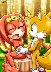 female fur furry furry_only furry_tail mobius_unleashed multiple_tails nipples sex sonic_(series) tagme tail tails tikal_the_echidna