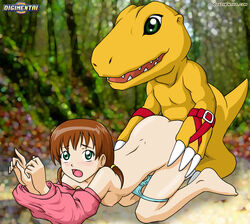 agumon blue_panties blush brown_hair clothed digihentai digimon digimon_savers digiphilia doggy_style green_eyes human kristy_daimon monster rape undressing younger_female