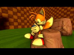 3d animated furry furry_only knuckles_the_echidna masturbation no_sound rouge_the_bat shocking_(artist) sonic_(series) tails webm