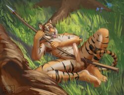 2016 abs anthro athletic balls chunie clothed clothing detailed_background erection feline fur grass hi_res loincloth looking_at_viewer lying male mammal melee_weapon on_back open_mouth outside pecs penis polearm solo solo_male spear stripes teeth tiger tongue topless tree tribal uncut weapon