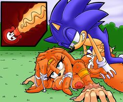 big_breasts breasts cum cum_in_pussy cum_inside dreamcastzx1 echidna female hedgehog huge_breasts huge_cock male mammal monotreme naroflow penis sonic_(series) sonic_the_hedgehog tikal_the_echidna