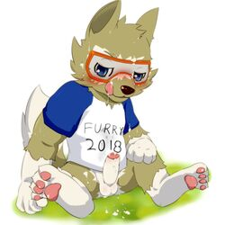 2016 anthro balls black_nose blue_eyes blush brown_fur canine clothed clothing cum english_text erection eyewear fifa fur goggles hair looking_at_viewer male mammal mascot multicolored_fur okunawa open_mouth penis russia russian shirt simple_background soccer solo solo_male sport spread_legs spreading text tongue tongue_out white_background wolf world_cup young zabivaka