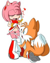canine clothing female fox fur hearlesssoul invalid_tag male mammal panties pussy sonic_(series) underwear