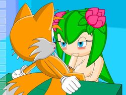 cosmo_the_seedrian sonic_(series) tagme tails