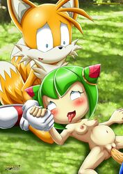 cosmo_the_seedrian mobius_unleashed palcomix sex sonic_(series) sonic_the_hedgehog tails
