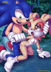 cream_the_rabbit mobius_unleashed palcomix sex sonic_the_hedgehog