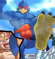 anthro avian ball_fondling balls bird blue_feathers bulge canine city clothing falco_lombardi feathers feet fondling footwear fox fox_mccloud internal looking_down looming low-angle_view male mammal mayar nintendo speedo star_fox stomping swimsuit video_games
