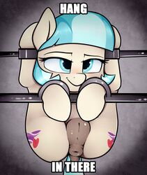 2017 anus ass blue_eyes bondage bound coco_pommel_(mlp) cutie_mark dock earth_pony english_text equine female feral friendship_is_magic furry grey_background hair horse looking_at_viewer mammal multicolored_hair my_little_pony neighday pony pussy simple_background smile solo text two_tone_hair