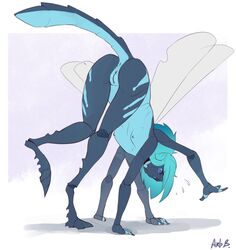 anthro anus arbuzbudesh arthropod ass blue_eyes blue_hair breasts digitigrade dragonfly female hair insects looking_at_viewer multi_arm multi_limb nipples no_sclera presenting presenting_hindquarters presenting_pussy pussy solo wings
