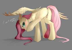 ... 2017 anus ass blush dialogue english_text equine feathered_wings feathers female feral fluttershy_(mlp) friendship_is_magic grey_background hair hi_res long_hair mammal my_little_pony pegasus pink_hair pink_tail presenting presenting_hindquarters pussy pussy_juice pussy_juice_drip pussy_juice_string raised_leg simple_background solo standing text vincher wings yellow_feathers