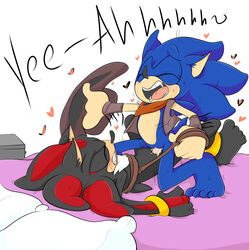 bound cum cum_in_pussy cuntboy penis pussy rule_63 shadow_the_hedgehog sonadowxx sonic_(series) sonic_the_hedgehog vaginal_penetration