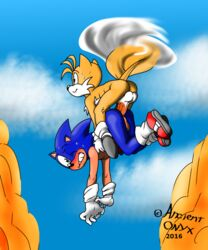 anal anal_sex ancient-onyx ancient_onyx sonic_(series) sonic_the_hedgehog tails yaoi
