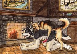 all_fours anal anal_sex anatomically_correct animal_genitalia animal_penis anthro anthro_on_feral border_collie canine canine_penis collie cum doggy_style duo erection feral feral_penetrating_anthro from_behind_position german_shepherd knot kola_(artist) larger_anthro male male_on_feral male_penetrating mammal nude penetration penis sex smaller_feral tongue yaoi zoophilia