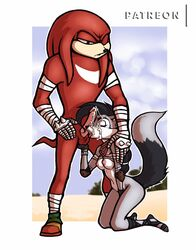anthro breasts cum cum_on_face fellatio female kneeling knuckles_the_echidna lupe_the_wolf luraiokun male mammal oral penis sex sonic_(series) sonic_boom submissive_female