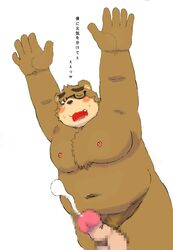 2017 anthro balls bear blush brown_fur cum eyewear fur glasses japanese_text male mammal moobs nipples one_eye_closed overweight overweight_male penis shu-ichiro simple_background solo text tokyo_afterschool_summoners volos white_background wink