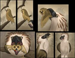 2018 ambiguous_gender avian beak belly bird brown_eyes cherry claws digital_media_(artwork) duo eagle feathers feral food fruit hi_res open_mouth oral_vore owl philippine_eagle pirate_eagle sequence size_difference skittishowl smile soft_vore talons tawny_owl tongue vore