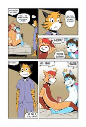 anthro canine caught comic feline fox frottage kojiyoung male male/male mammal penis red_panda sex shizumi_aoki tiger tolok wavemaster