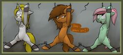 bound braces branded captive chained chains crossover dialogue digital_media_(artwork) earth_pony english_text equine fallout fallout_equestria fallout_venus fan_character feathered_wings feathers female feral group horn horse mammal marsminer my_little_pony numbers pony pussy spread_legs spreading suspension text unicorn venus_spring video_games wings