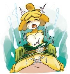 ahe_gao animal_crossing anthro blush breasts canine canine cum cum_in_pussy cum_inside duo faceless_male female female_focus isabelle_(animal_crossing) looking_pleasured male male/female mammal minus8 nintendo nipples penetration penis pussy sex shih_tzu solo_focus tears vaginal_penetration video_games