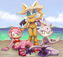 amy_rose ass beach big_breasts bikini blaze_the_cat blush breasts clothing collarbone day female footwear full_body green_eyes hat headband high_heels looking_at_viewer nancher navel one_eye_closed open_mouth outside rear_view rouge_the_bat sea seaside shoes signature sitting sky smile sonic_(series) standing swimsuit water wings wink yellow_eyes